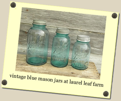 vintage blue mason jars at Laurel Leaf Farm