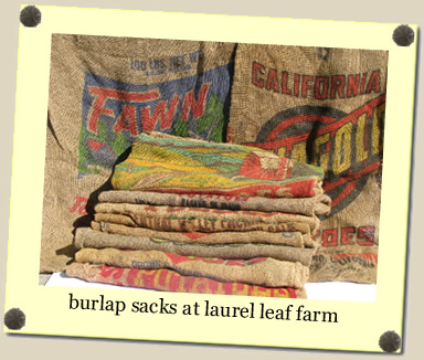 burlap sacks at Laurel Leaf Farm