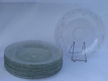 12 vintage bake sale cake platter / bakery display plates, daisy pattern glass