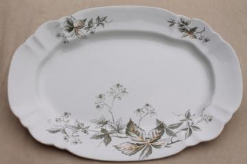 1880s antique English Staffordshire transferware platter, Virginia creeper vine