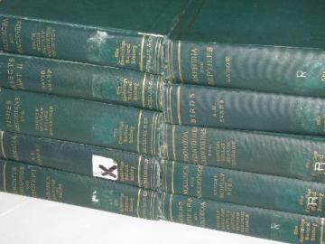 1920s The Cambridge Natural History, 10 large illustrated volumes