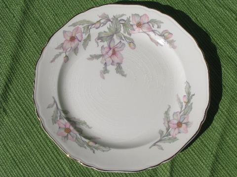 1930s Vintage Crown Pottery Pretty Pink Floral China & 1930s Dinnerware - Castrophotos