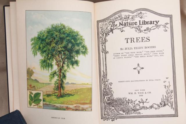 1930s vintage natural history books w/ color plates, butterflies, trees, flower illustrations