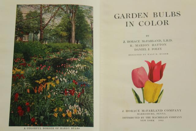 1940s vintage illustrated gardening book, flower bulbs colored garden photo plates