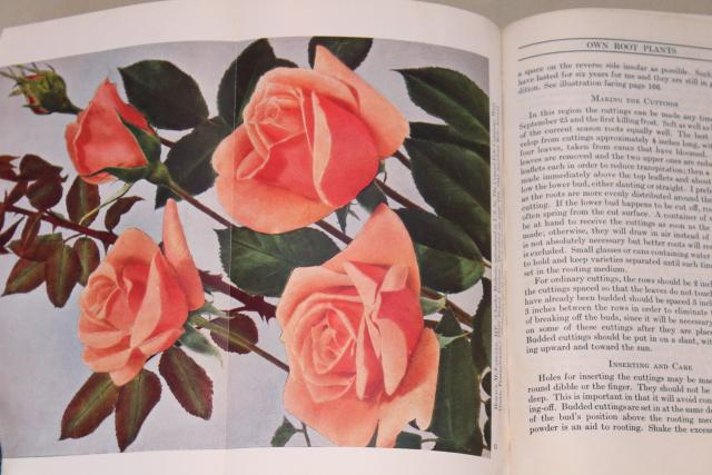 1945 American Rose Annual, vintage gardening book growing and varieties of roses