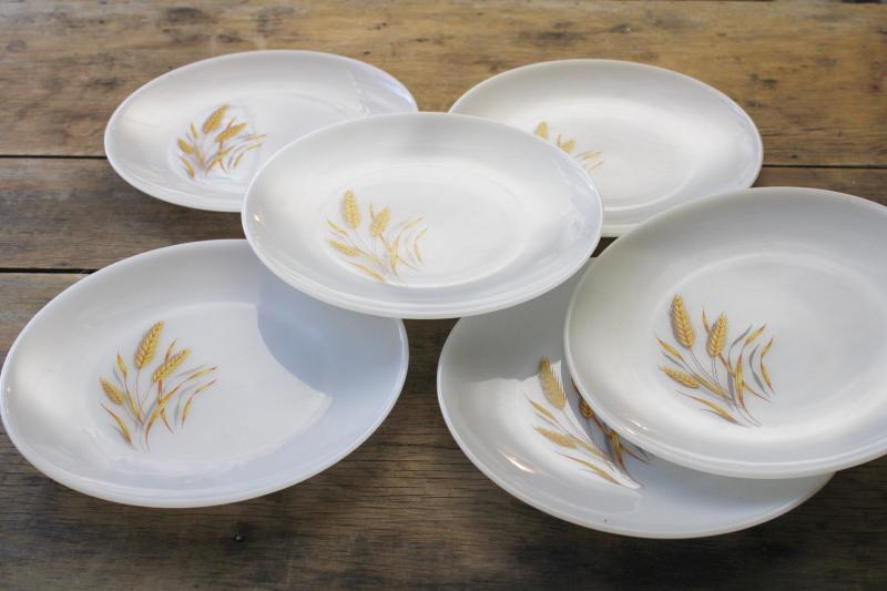 1960s vintage Anchor Hocking Fire King wheat pattern milk glass dinner plates