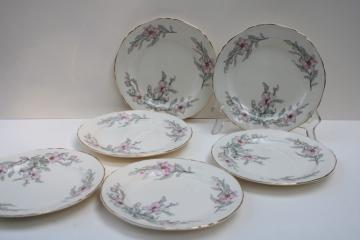 40s 50s vintage Crown Potteries plates, pink grey floral southern charm magnolias or dogwood