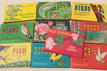 50s vintage Whitman Guides, lot of 10 little guide books flowers, trees, birds, fish