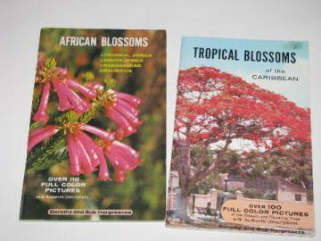 60s - 70s color photo illustrated booklets, tropical Caribbean flowers, African Blossoms