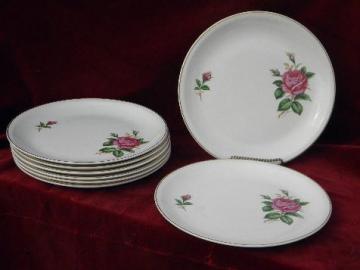 8 old moss rose pattern china dinner plates, vintage USA - Paden City pottery