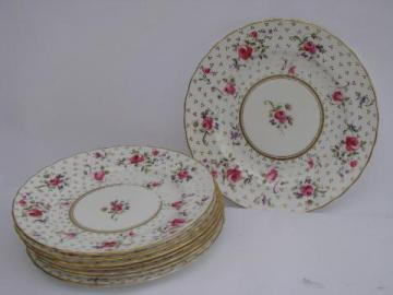 8 vintage roses china plates, Royal Chelsea hand-painted English porcelain