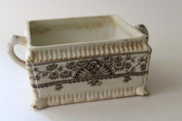 Alexandria palm leaf pattern brown transferware, aesthetic antique china square honey box