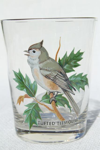 American Song Birds Set Vintage On The Rocks Glasses West