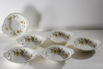 Autumn Mist yellow coreopsis flowers vintage Canonsburg china chowder bowls w/ handles