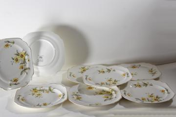 Autumn Mist yellow coreopsis flowers vintage Canonsburg china square plates