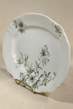 Azalea pattern antique green transferware platter English earthenware or ironstone