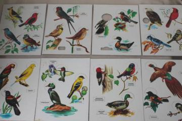 Bird Fun song birds puzzles, vintage Built Rite children's puzzle game set