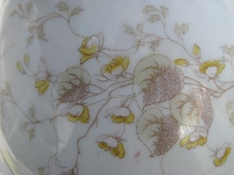 Bohemia Antique Imperial Karlsbad Floral Transferware