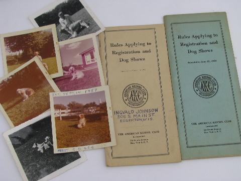 Cocker Spaniel dog pedigrees, old show stock papers, breed photos
