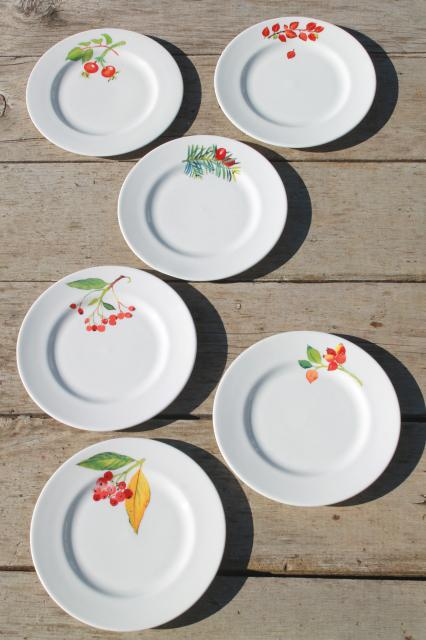 Christmas Crate And Barrel.Crate Barrel Christmas Holiday Berry China Plates Mary