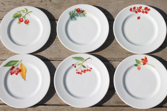Crate U0026 Barrel Christmas Holiday Berry China Plates, Mary Woodin Crate And  Barrel