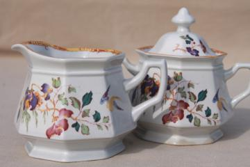 Devon Rose Wedgwood china cream pitcher & sugar bowl set, 1970s vintage