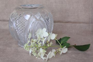 Empire pattern EAPG antique pressed glass rose bowl vase, vintage crystal clear glass