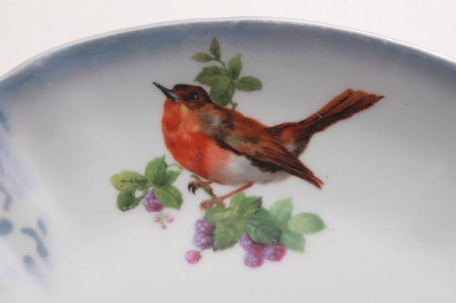 English songbirds vintage china cake plate or sandwich tray, shabby cottage chic