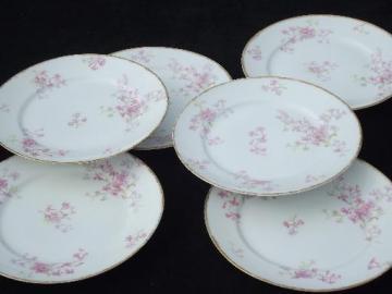 GDA Charles Field Haviland Limoges vintage pink floral china plates
