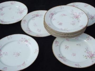 GDA Charles Field Haviland Limoges vintage pink floral dinner plates