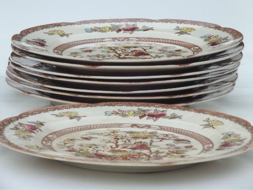 & India Tree pattern dinner plates vintage Maruta Japan Indian Tree