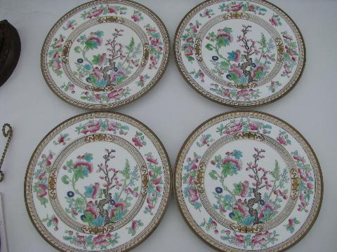 India or Indian Tree, antique vintage Royal Doulton china plates