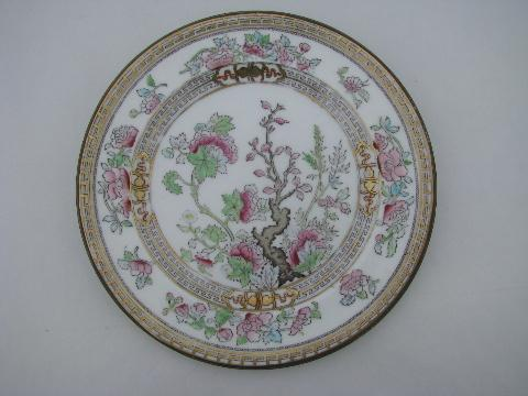 & India or Indian Tree lot 12 antique vintage Royal Doulton china plates