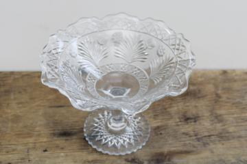 Indiana horsemint wildflower pattern, EAPG vintage pressed glass compote circa 1915