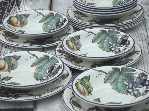 & Macintosh fruit pattern Pier 1 china dinner plates \u0026 soup bowls for 8