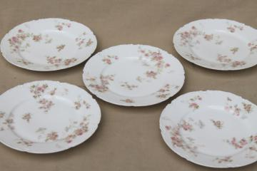 Marie pink floral vintage Haviland Limoges china, small bread & butter or dessert plates