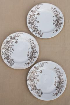 Meakin - Essex antique brown transferware ironstone china plates poppies & wildflowers