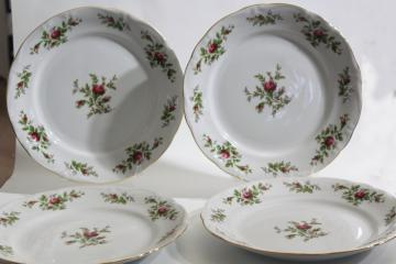Moss Rose pink roses china Johann Haviland Traditions dinner plates set of four