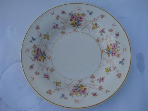 New Princess tiny flowers pattern, vintage American Limoges