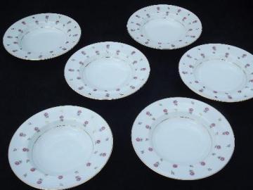 Noritake Rosalie rosebud chintz border china soup plates, 6 rimmed bowls