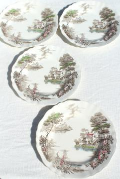 Olde Avon Dale transferware china, vintage J & G Meakin English Staffordshire dinner plates