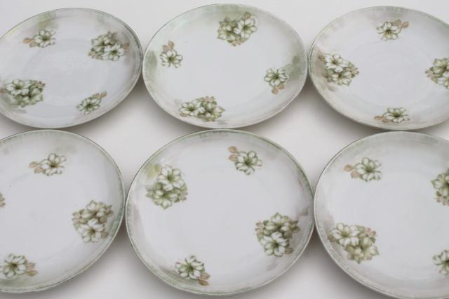 RS Germany china plates antique dessert set dishes w/ hand painted flowers u0026 luster  sc 1 st  Laurel Leaf Farm & RS Germany china plates antique dessert set dishes w/ hand painted ...