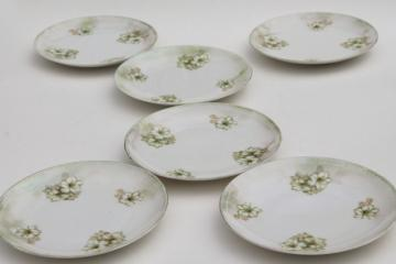 RS Germany china plates, antique dessert set dishes w/ hand painted flowers & luster