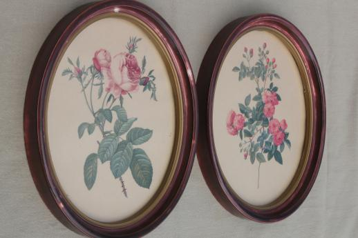 Redoute Roses Floral Botanical Prints Pair Of Vintage Pictures In Oval Frames