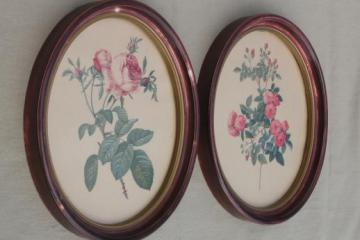 Redoute roses floral botanical prints, pair of vintage pictures in oval frames