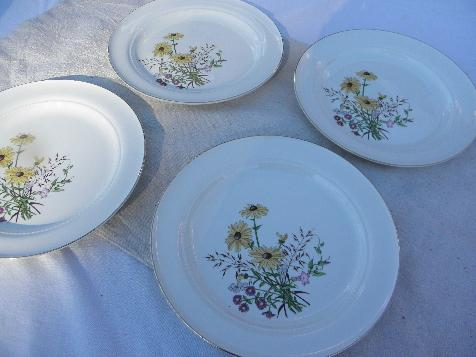 Richmond pattern vintage Hall china plates, brown eyed susans & asters