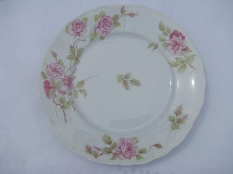Rosenthal Iris Pink Roses Pleat Pattern China Dinner