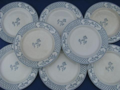 & The Exeter blue \u0026 white vintage English china plates old Johnson Bros