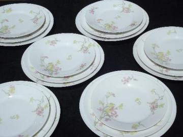 Theodore Haviland vintage pink floral china plates for 6 in three sizes