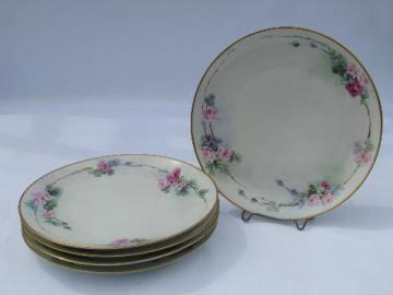 Titanic hand-painted china plates, antique vintage Austria porcelain, ca. 1900